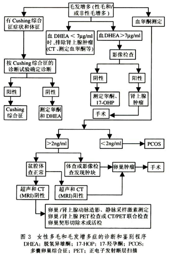 Gxpsnm8f.jpg