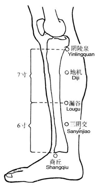 File:Bk7su.jpg